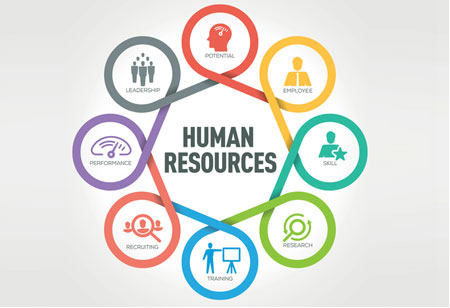 HR Recreating Roles and Responsibilities to Drive Business Productivity