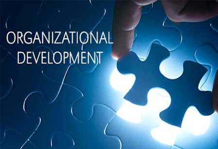 How Can Innovation Ensure Organizational Development?