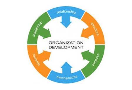 Guiding Principles of Organizational Development