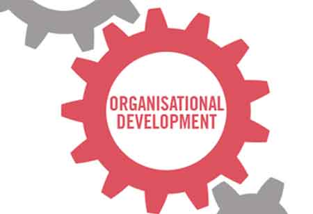 From Chaos to High Performance; Different Stages of Organizational Development