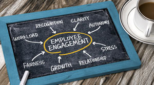 employee engagement in organisation