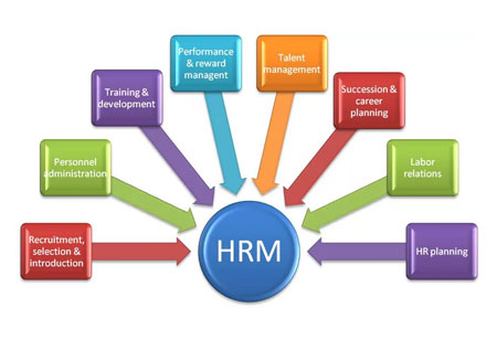 Imparting a Balanced Whole Brain Approach to HR Management