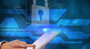 Protecting Business Data with Payroll System Software